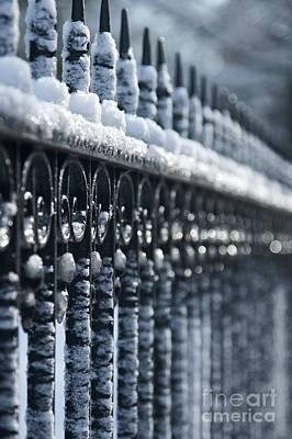 Metal Fence Photograph - Frozen Fence 2 by Hideaki Sakurai