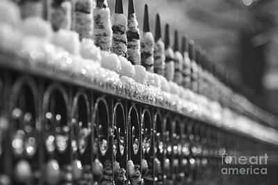 Metal Fence Photograph - Frozen Fence by Hideaki Sakurai