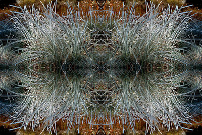 Art Print featuring the photograph Frozen Grass Abstract by Gary Cloud