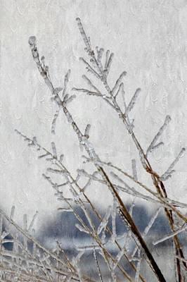 Just Desserts - Frozen Grass by Annie Adkins