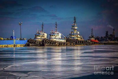 Photograph - Frozen Harbour by Roger Monahan