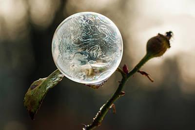 Photograph - Frozen by Jaroslaw Blaminsky
