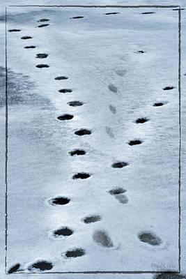 Photograph - Frozen Lake Animal Prints by Paul Vitko