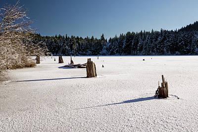 Photograph - Frozen Lake by Inge Riis McDonald