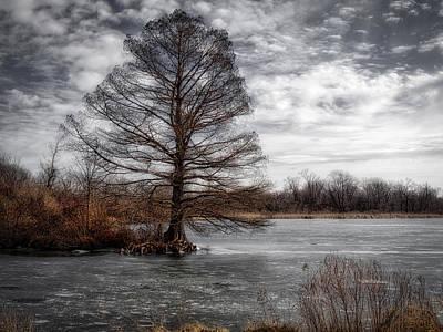 Photograph - Frozen Lake by Michael Colgate