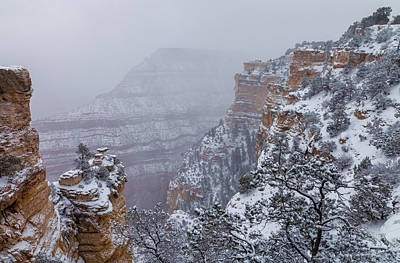 Photograph - Frozen Land by Jonathan Nguyen