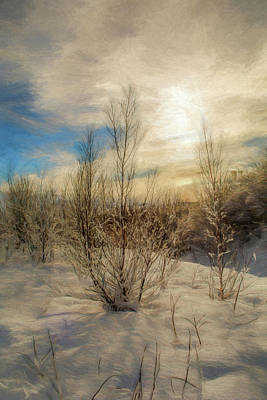 Photograph - Frozen Landscape by Maria Coulson