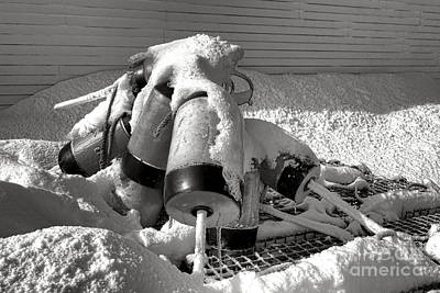 Commercial Fishing Photograph - Frozen Lobster Trap Buoys In Snow by Olivier Le Queinec