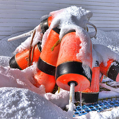 Photograph - Frozen Lobster Trap Buoys In Winter by Olivier Le Queinec