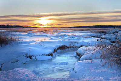 Photograph - Frozen Marsh by Ed Fletcher