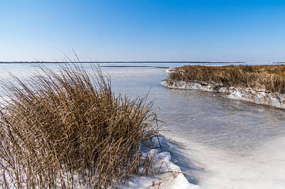 Photograph - Frozen Marsh by Gregg Southard