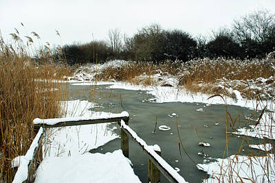 Frozen Marsh Original by Terence Davis