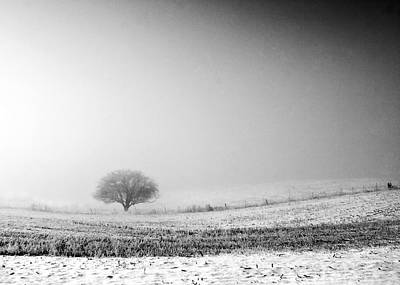 Frozen Mist Art Print