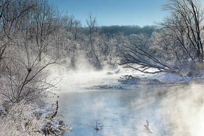 Photograph - Frozen Misty Morning by David Watkins