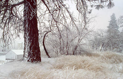 Frozen Morning In Palouse Art Print by Jerry McCollum