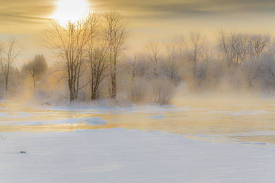 Photograph - Frozen Morning by Pierre Cornay