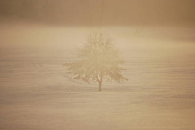 Frozen Natural Sepia Horizontal Art Print by Peter  McIntosh