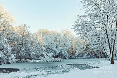 Golden Pond Wall Art - Photograph - Frozen Pond In Winter by Amanda Elwell