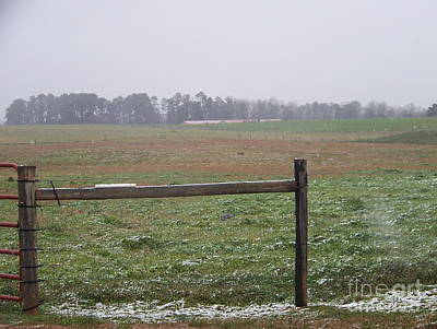 Photograph - Frozen Rainy Field by Kevin Croitz