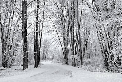 Photograph - Frozen Road by Mike Dawson