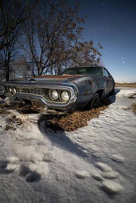 Photograph - Frozen Road Runner  by Aaron J Groen
