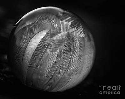 Photograph - Frozen Soap Bubble - Black And White - Macro by Adrian DeLeon