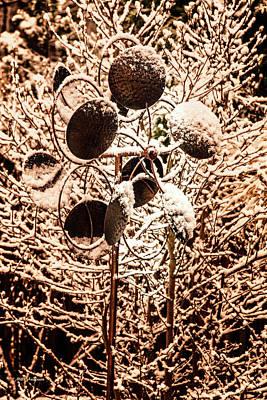 Photograph - Frozen Stillness by Mick Anderson