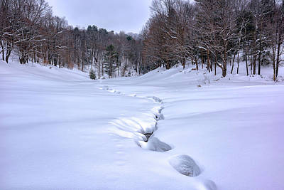 Photograph - Frozen Stream In Reading Vt by Rick Berk