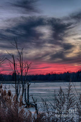 Photograph - Frozen Sunset by Nicki McManus