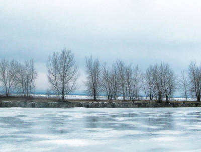 Photograph - Frozen by Tammy Espino