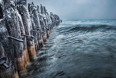 Photograph - Frozen Tender by Thomas Gaitley