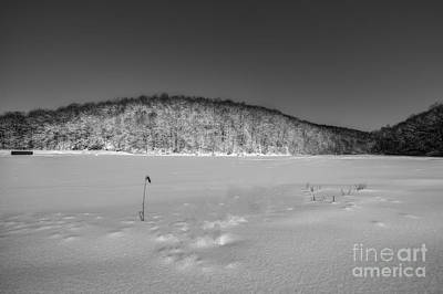 Photograph - Frozen Trout Pond by Dan Friend