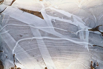 Photograph - Frozen Water On Ground by Amelia Racca
