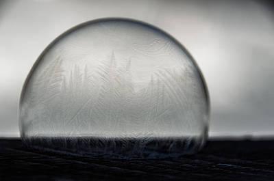 Photograph - Frozen World by Christina VanGinkel