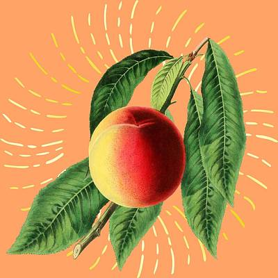 Digital Art - Fruit 0100 by Ericamaxine Price
