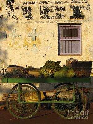 Photograph - Fruit Cart I by Derek Selander
