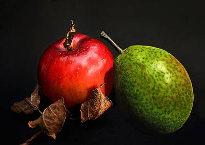 Food And Beverage Royalty-Free and Rights-Managed Images - Fruit Coalition by Joachim G Pinkawa