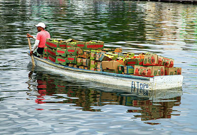 Photograph - Fruit Delivery by Arthur Dodd