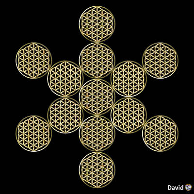 Digital Art - Fruit Of Flowers by David Diamondheart