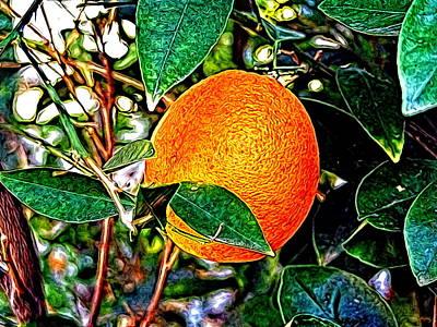 Print featuring the photograph Fruit - The Orange by Glenn McCarthy Art