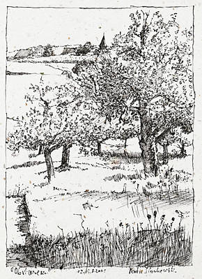 Drawing - Fruit Tree Orchard Plein Air Ink Drawing by Martin Stankewitz