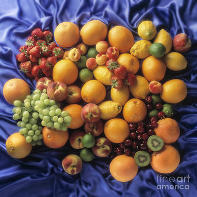 Fruits Of The Earth Original by Kim Lessel