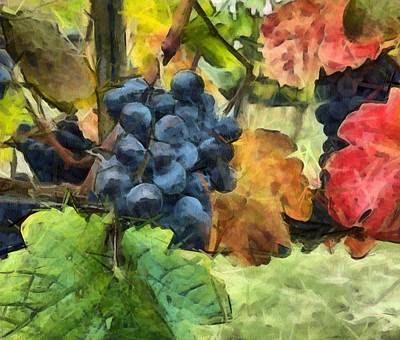 Fruits Of The Vine Print by Judy Coggin