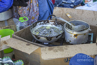 Photograph - Frying Sardines Outside by Patricia Hofmeester