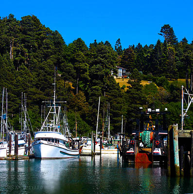 Photograph - Ft. Bragg Harbor by Susan Vineyard