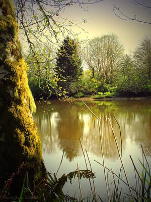 Photograph - Ft Clatsop Reflections by Joyce Dickens
