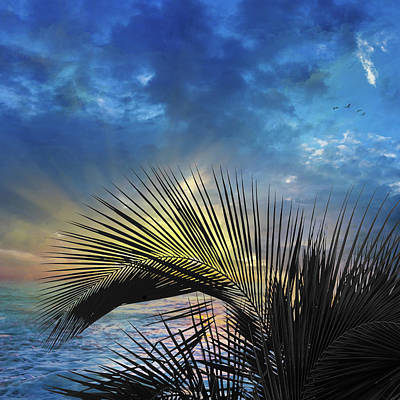 Ft Lauderdale Sunrise Art Print