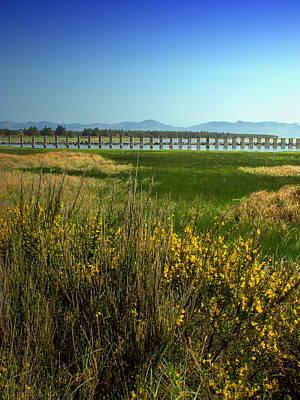 Photograph - Ft Stevens Oregon Vista by Joyce Dickens