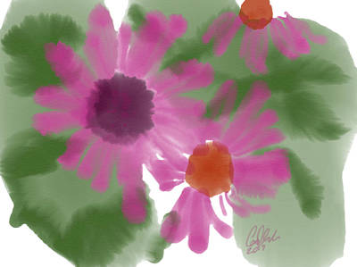 Fuchsia Gerbers Art Print by Carl Griffasi