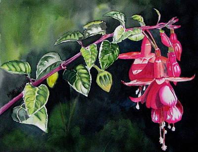 Fuchsia Art Print by Maria Barry